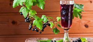 Liquore di Ribes Nero